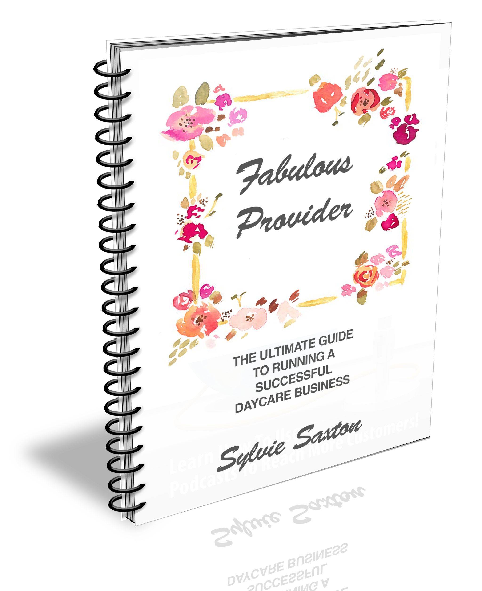 fabulous-provider-sylvie-saxton-final-cover-revised-new-3d-trans